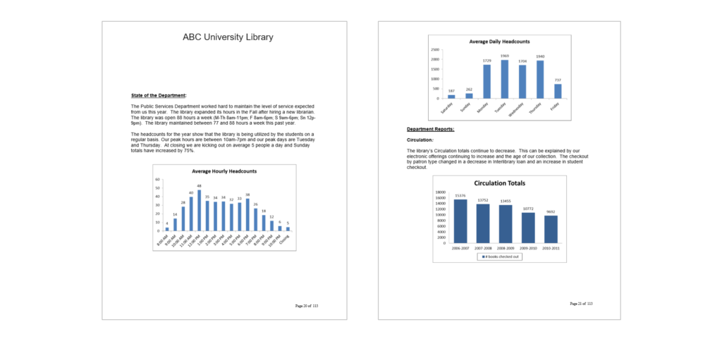 This is a screenshot from the beginning of the report that offered background information about the library, like how many visitors came to the library each hour and each day.
